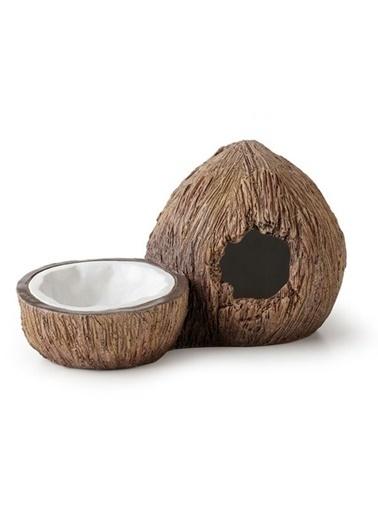 JBL Exo Terra Ex Coconut Saklanma Alanı - Su Kabı Renkli